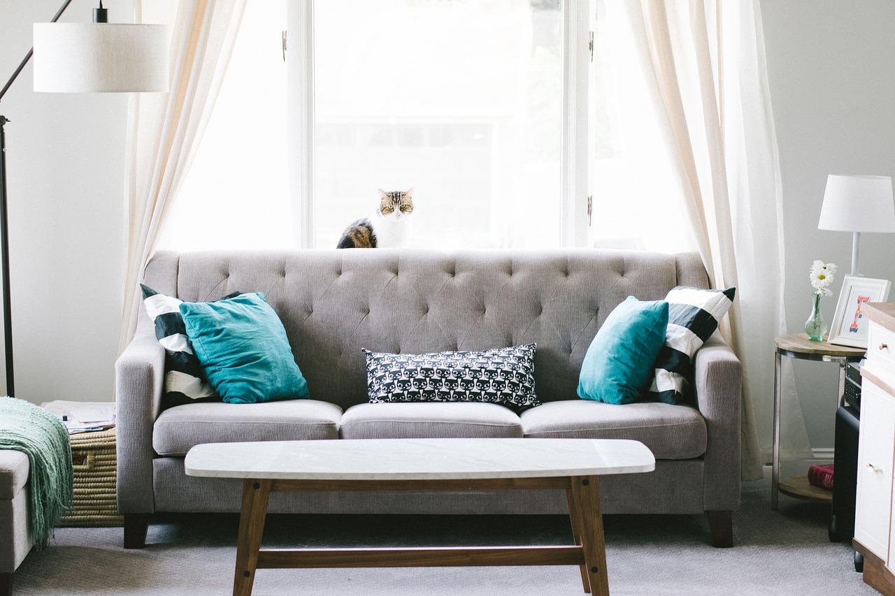 Fote i sofy: komfort na najwyższym poziomie